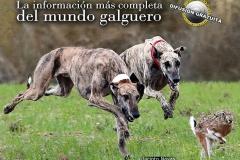Revista Galgos  abril 2019